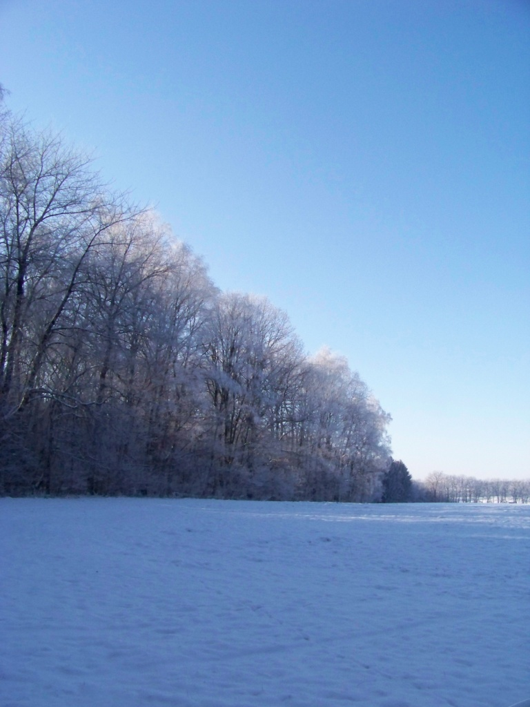 winterbilder-klein